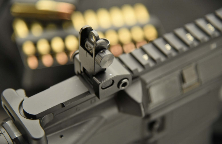 The flip-up adjustable rear sight, rised up