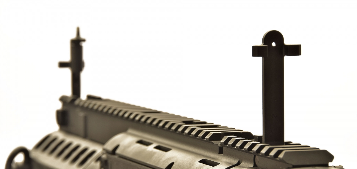 The X95 comes issued with back-up iron sights that fold down within the top Picatinny rail