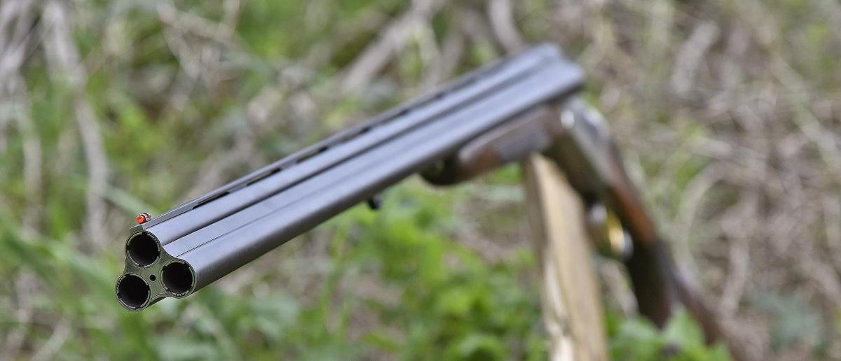 Hunting rifles thread Chiappa_Firearms_Triple_Crown_94