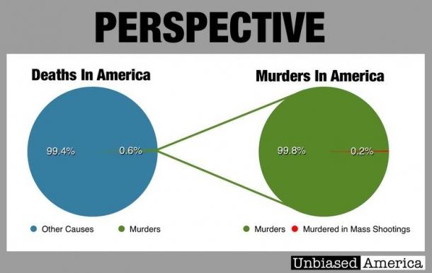 """Le cose viste dalla giusta prospettiva: quante persone all'anno muoiono negli USA nelle famose """"stragi delle armi""""?"""