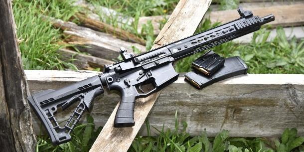 Sono tredici le categorie di armi corte e lunghe, armi ad aria compressa, munizioni da caccia e da tiro, munizioni per armi corte, ottiche da puntamento e da osservazione tra cui i votanti potranno scegliere