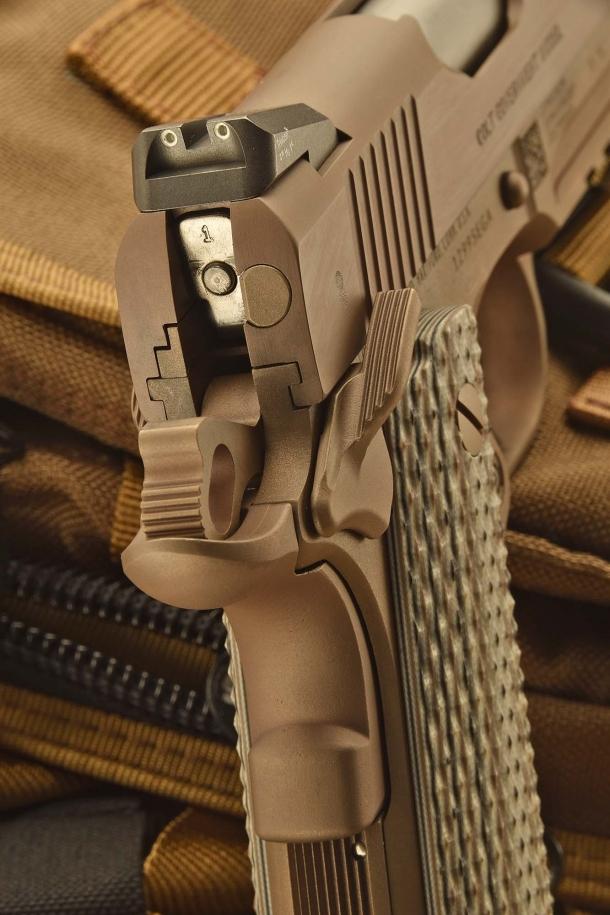 Vista posteriore della pistola: il cane armato e la sicura manuale è inserita