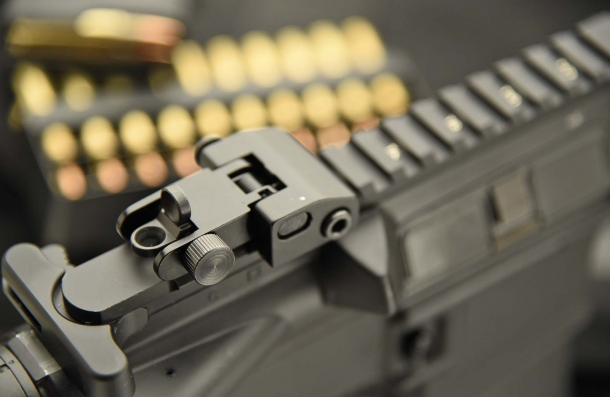 The flip-up adjustable rear sight