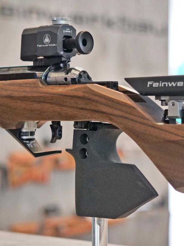 22 New Years Nail Nail Art Designs Ideas: Carabina Feinwerkbau 2800 Calibro .22 Long Rifle: Il Tiro