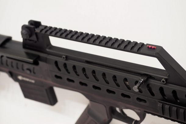 The raised Picatinny rail also hosts the front and rear sights