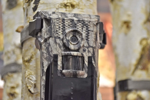 Bushnell Impulse Cellular Trail Camera