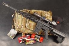 Speciale Armi e Balistica - ARMI CUSTOM