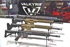 Savage Arms MSR-15 Valkyrie